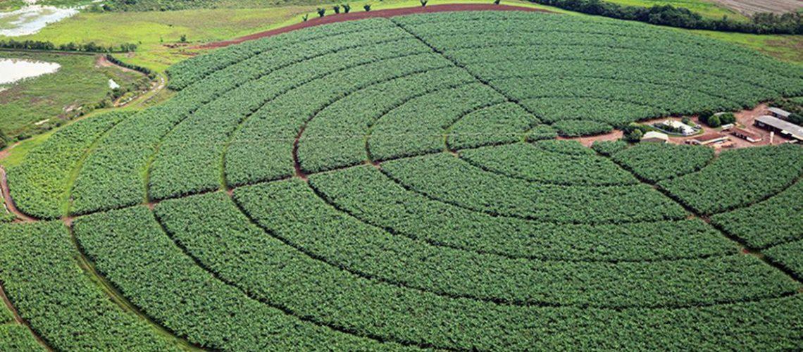 Reservatórios de pivôs centrais de irrigação em Itaí (SP)